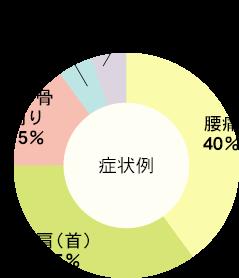 症状例 腰痛 40% : 肩(首) 35% : 肩甲骨周り 15% : 足 5% : 浮腫み等 5%